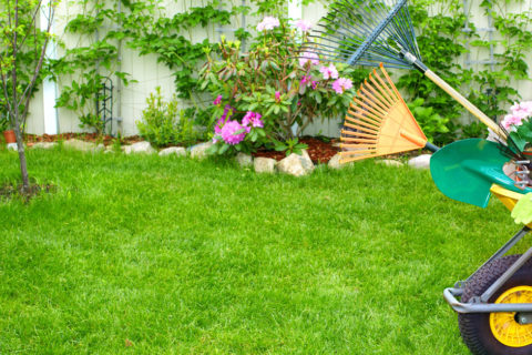 How To Make The Best out of Your Lawn Care