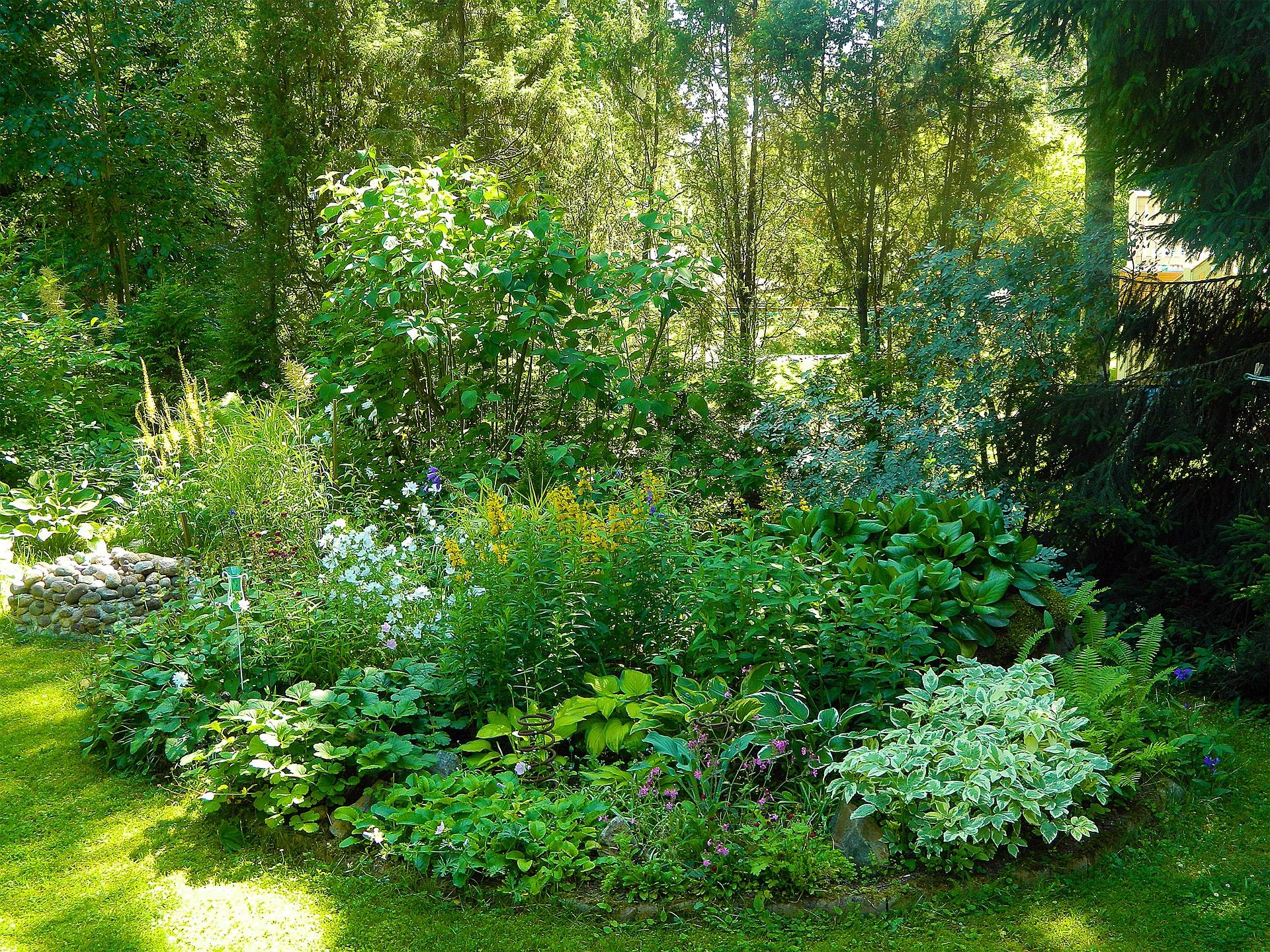 garden-224895_1920