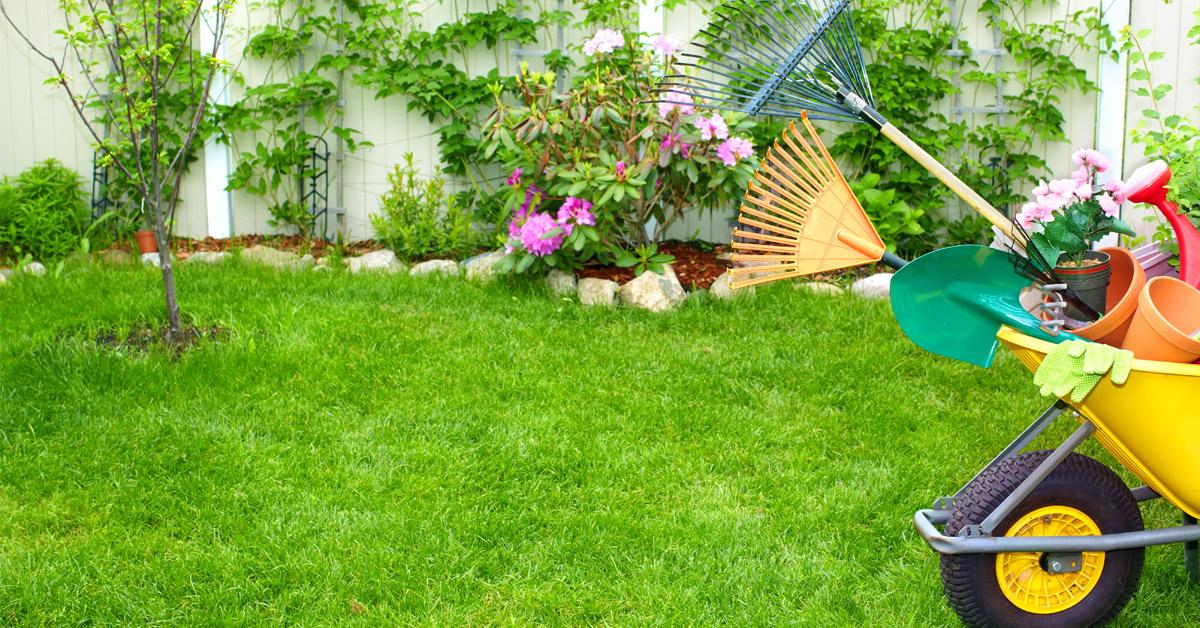 lawn-care2