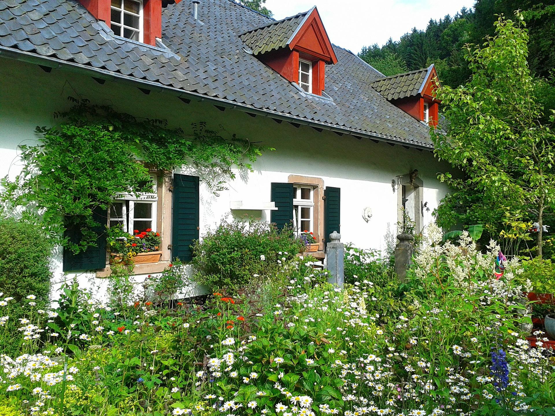garden-302259_1920